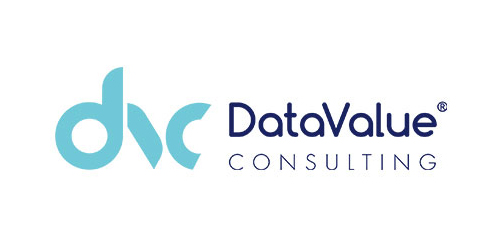 Data-Value-Consulting-500x250px
