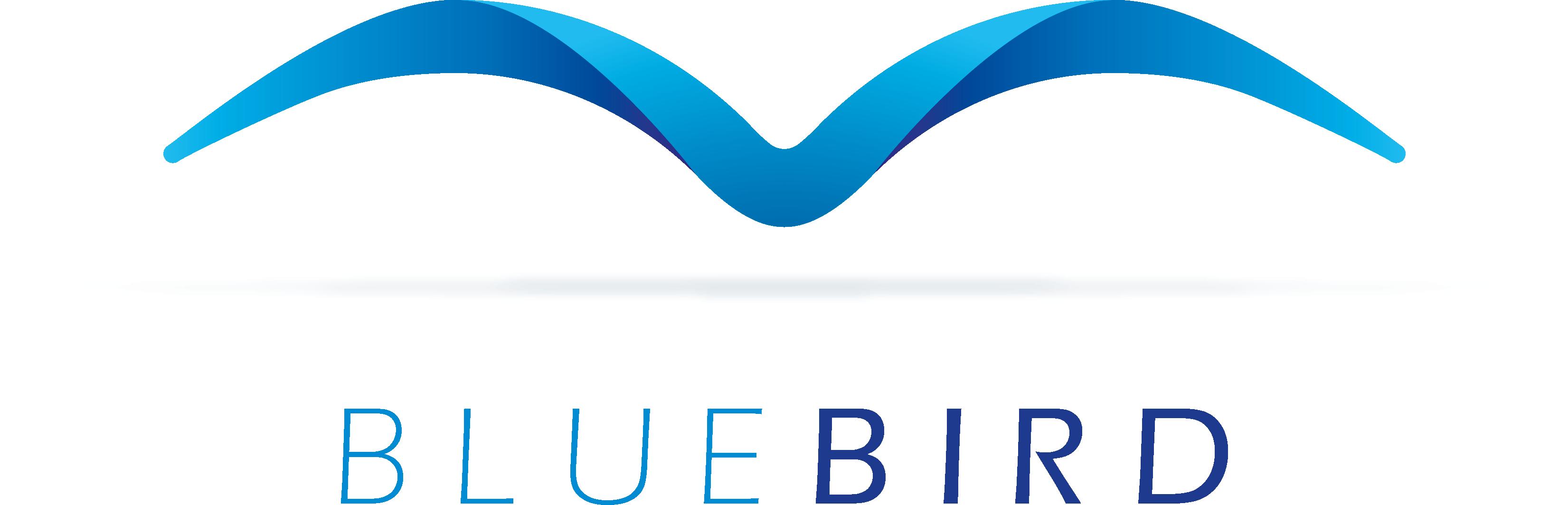 BlueBird_Hoch